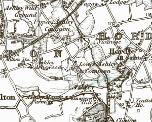 1888 map of Milton and Ashley. 1