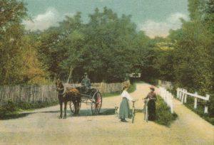 fernhill-road-c-1900
