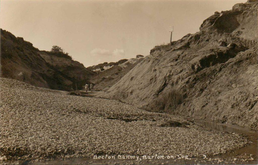becton-bunny-postcard